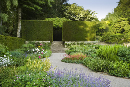 Herbaceous planting in the Terrace garden at Castle Drogo near