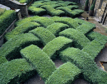 Knot Garden Easy Home Decorating Ideas