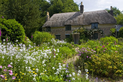 Hardy S Cottage The Birthplace In 1840 Of Novelist And