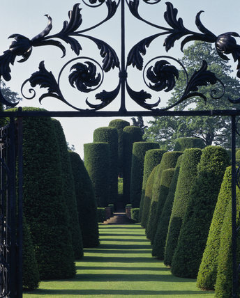 The eighteenth century gate leading to the avenue of giant yews at Packwood House