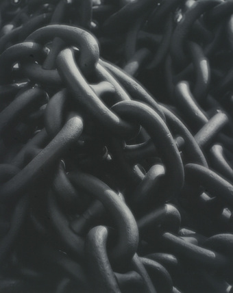 Links of a Mammoth Chain