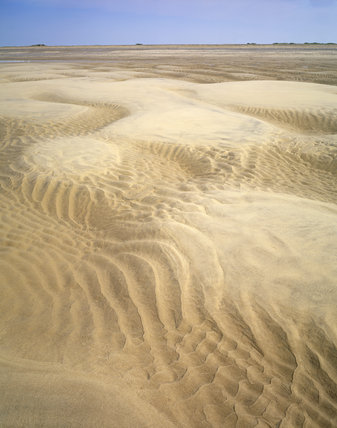A view of the Blakeney Point landscape depicting a long yellow white sandy beach area which is patterned with ripples and marks from the sea
