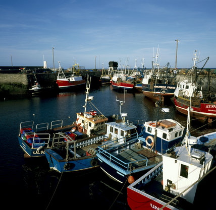 Fishing boats at Seahouses harbour, Northumberland