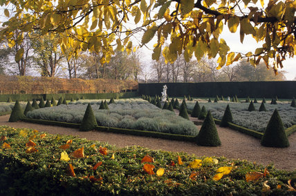 The East Garden Parterre at Ham House in the autumn, showing the beds of cotton lavender, with box cones lining the paths leading to the statue of Bacchus in the background