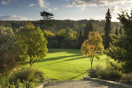 A wide view of the Sunken Garden at Polesden Lacey, Dorking, Surrey with Acer griseum trees, and long shadows caused by the low winter sunlight
