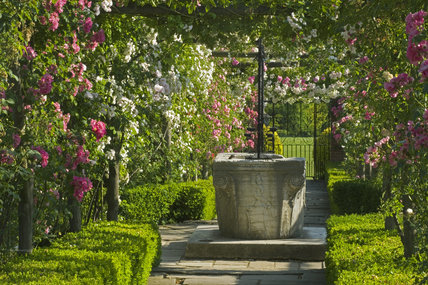 The well-head framed by rose pergolas in the Walled Garden at Polesden Lacey, Surrey
