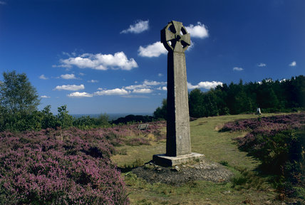 'The Gibbet', a large stone cross on Hindhead common, near flowering heather