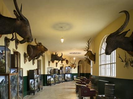 The Trophy Corridor At Kedleston Hall Kedleston Hall At