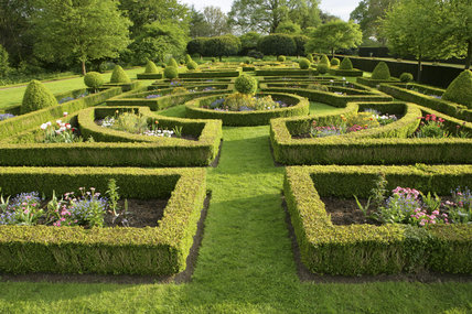 The Parterre at Westbury Court Garden, Gloucestershire, UK with ...