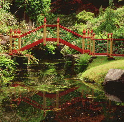 The Chinese footbridge over an ornamental stream in the China Garden at Biddulph Grange, evokes the magical Victorian vision of China, a setting for many the newly discovered exoitc plants