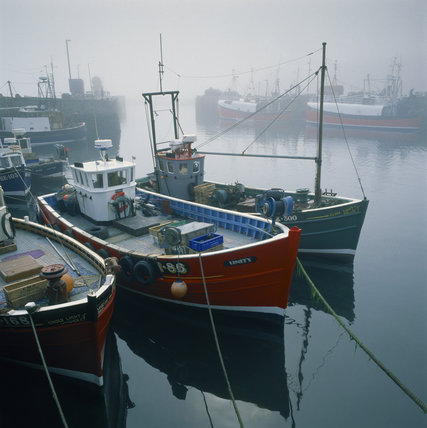 Fishing boats in the harbour at Seahouses with mist on the water