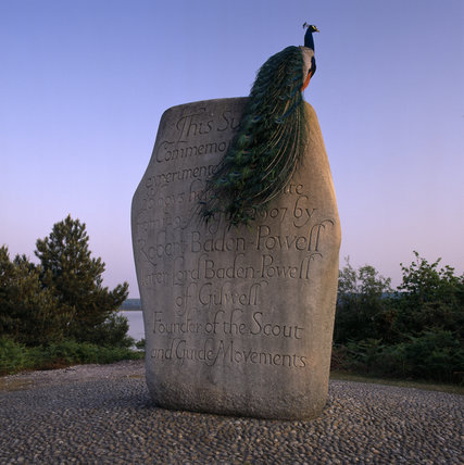 A beautiful peacock sitting on the Boy Scout Memorial on Brownsea Island in the early evening twilight