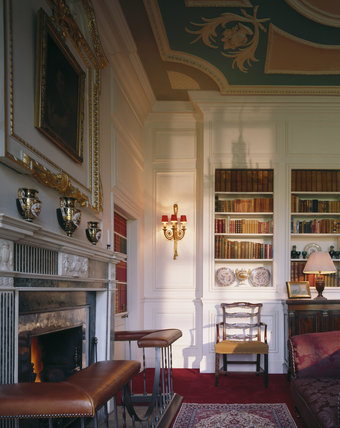 A corner of the Library with the fireplace and club fender