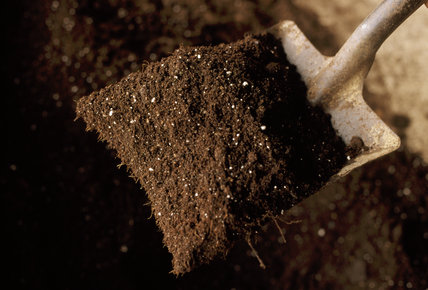 Close up of a shovel containing a pile of compost at Anglesey Abbey