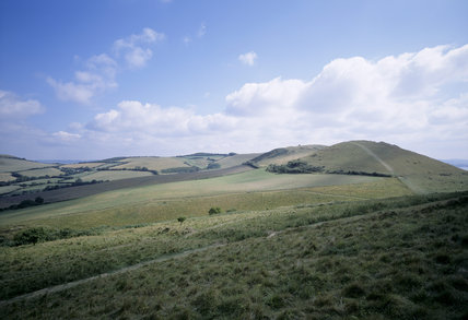 View looking east from Ridege Cliff (Golden Cap Estate), towards Frogmore Hill and Thorncombe Beacon