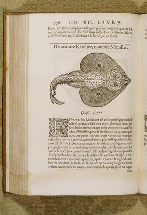 A detailed close up of one of the manu books to be found in the Library of Felbrigg Hall