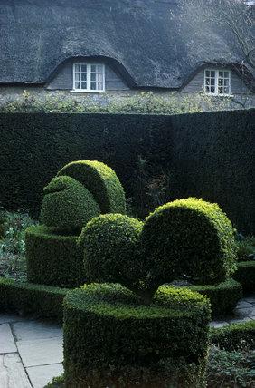 Hidcote, Topiary in The White Garden