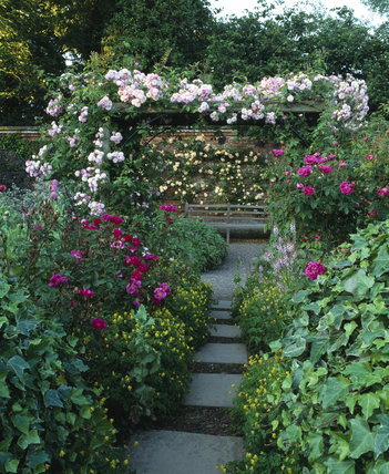 The Rose Garden at Mottisfont Abbey with
