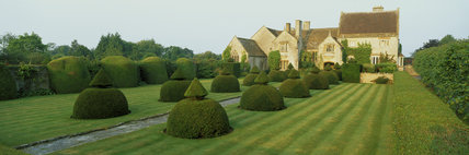 The Apostle Garden at Lytes Cary Manor, derives its name from the twelve clipped yew bushes that line the stone path between the lawns