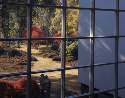 Looking at the autumnal colours in the garden at The Homewood, through one of the first floor windows