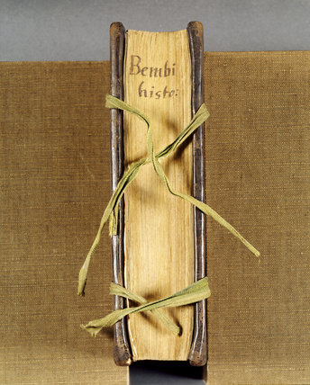 Close view of a book with a sixteenth century binding, woven ties and the title