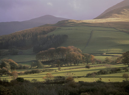 Autumn woods and agricultural land at Loweswater, Buttermere Valley in Cumbria