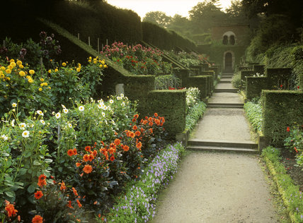 Looking down the Dahlia walk to the Shelter House at Biddulph Grange, with the yew hedges and butresses on the left