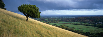 View over the countryside to the distant horizon from Box Hill