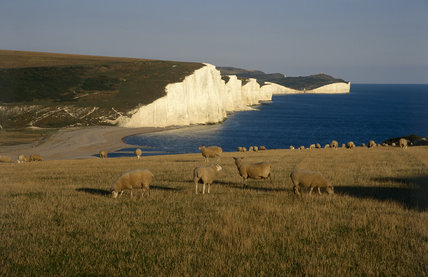 View looking east in evening light across Cuckmere Haven towards Crowlink and the Seven Sisters in East Sussex