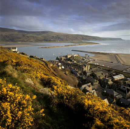 The gorse-covered cliff-land at Dinas Oleu above Barmouth, the first property to be owned by the NT, given in 1895