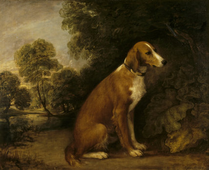 A SETTER by Thomas Gainsborough (1727-1788) from the North Gallery at Petworth House (Dec 1992)