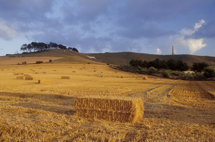 Cherhill Down in Wiltshire with bales of hay in a field of newly cut straw in the foreground