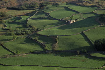 Eskdale Farm from Little Barrow, a patchwork of bright green fields, Cumbria