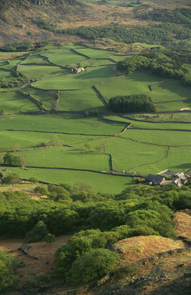 Eskdale Farm from Little Barrow Landscape of green fields trees & hills