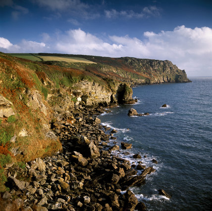 A view along the rugged cliffs to Nare Head