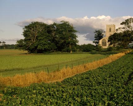 A view across the fields at Felbrigg Hall of Felbrigg church