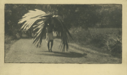Man Carrying Palm Leaves, Malabar