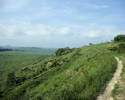 Chalky path winding along the top of a bank at Cissbury Ring with a view off over the green fields to the left, with a blue cloudy sky