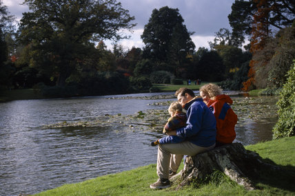 A young couple sit with their baby on a stump of a tree, on the grassy bank of the lake in Sheffield Park, Sussex