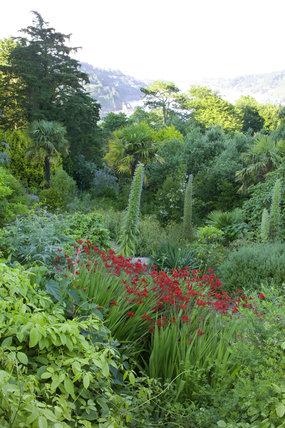 The view over Salcombe estaury from Overbecks Garden, Devon