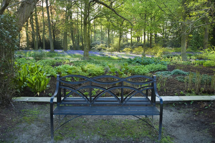 A garden seat amongst the tranquil woodland planting at Dunham Massey, Cheshire