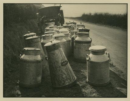 Milk Tankards