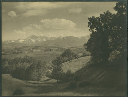 Landscape with sheep and snow covered mountains