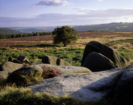The Longshaw Estate of more than 1,000 acres consists of typical Pennine millstone grit