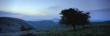 Panoramic view of the Long Mynd and undulating moorland hills at the head of Carding Mill Valley in the misty blue early morning light