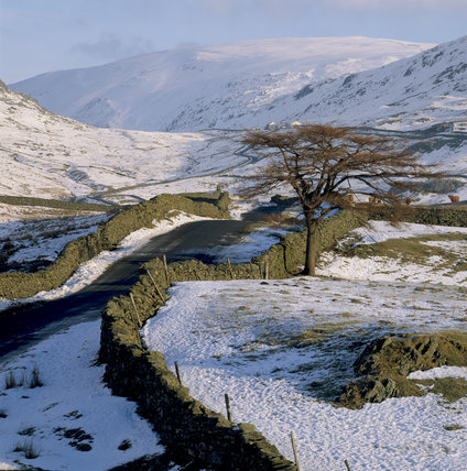 Snow covered fells and fields and a larch without its leaves, below Kirkstone Pass, Ullswater valley