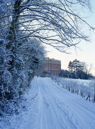 Looking along a snowy track to the House at Clandon Park