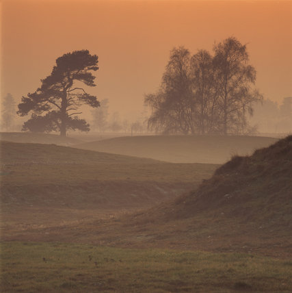 View of the burial mounds at Sutton Hoo at sunset