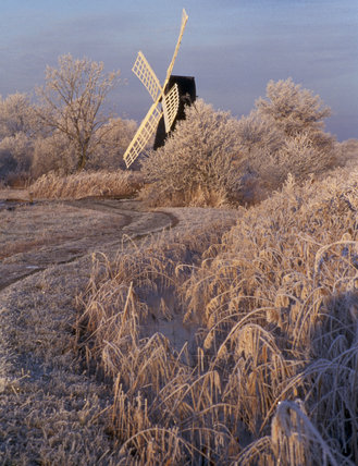 A frost-covered path along the dyke leading to the wind-pump at Wicken Fen