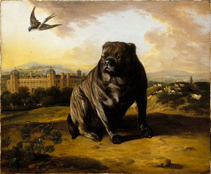 A DUTCH MASTIFF WITH DUNHAM MASSEY IN THE BACKGROUND by Jan Wyck